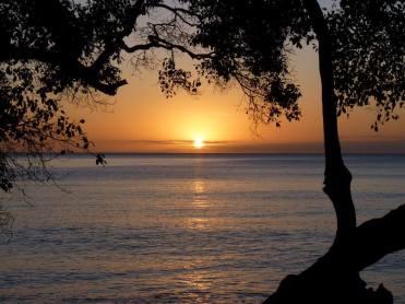 coucher soleil 3 baobabs