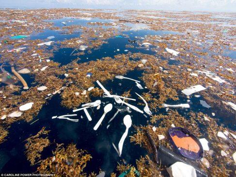 plastique mer