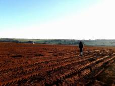 farmwork2