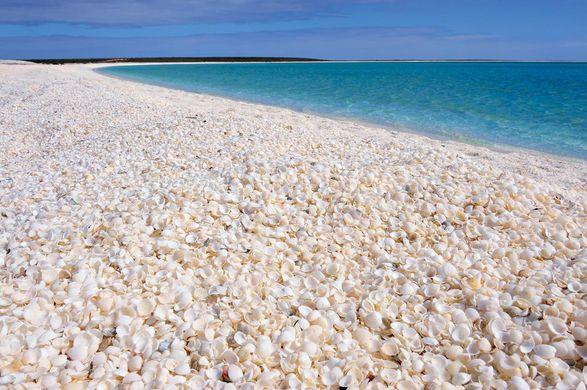 shell beach.jpg